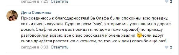 http://otelkote.ru/wp-content/uploads/2018/02/Отзыв-от-Олафа.png